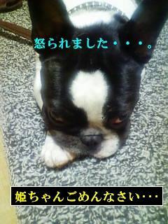 b0149736_1830495.jpg