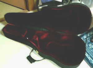 ギターケース購入_e0075356_19575868.jpg