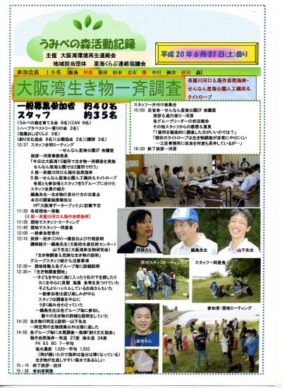 「大阪湾生き物一斉調査」 in  せんなん里海公園_c0108460_032450.jpg