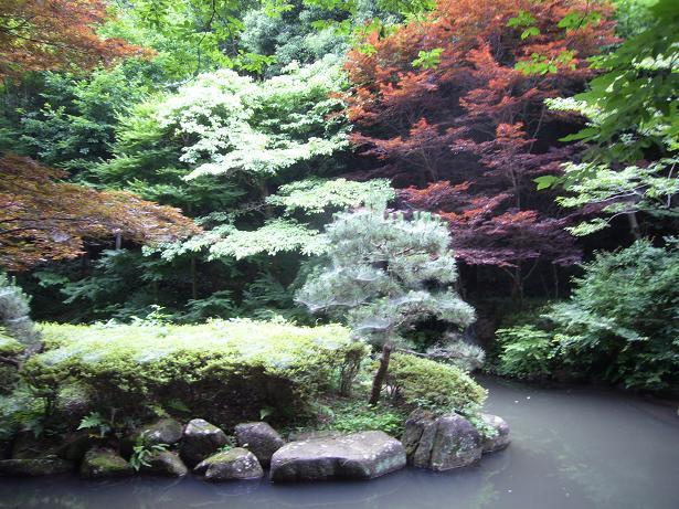 東高根森林公園 20086,20_e0108897_0361478.jpg