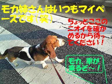 f0121712_16242636.jpg
