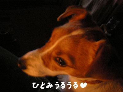 f0129214_1224262.jpg