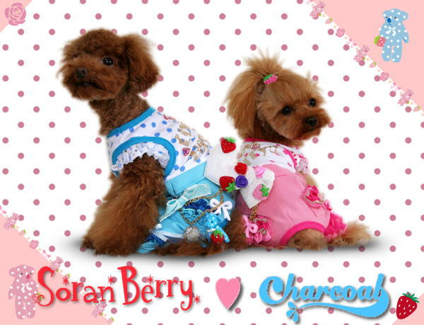 SoranBerry×UPCOLORS(Charcoal)_b0084929_1142120.jpg