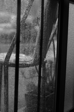 雨とsajilo!_b0140723_275538.jpg