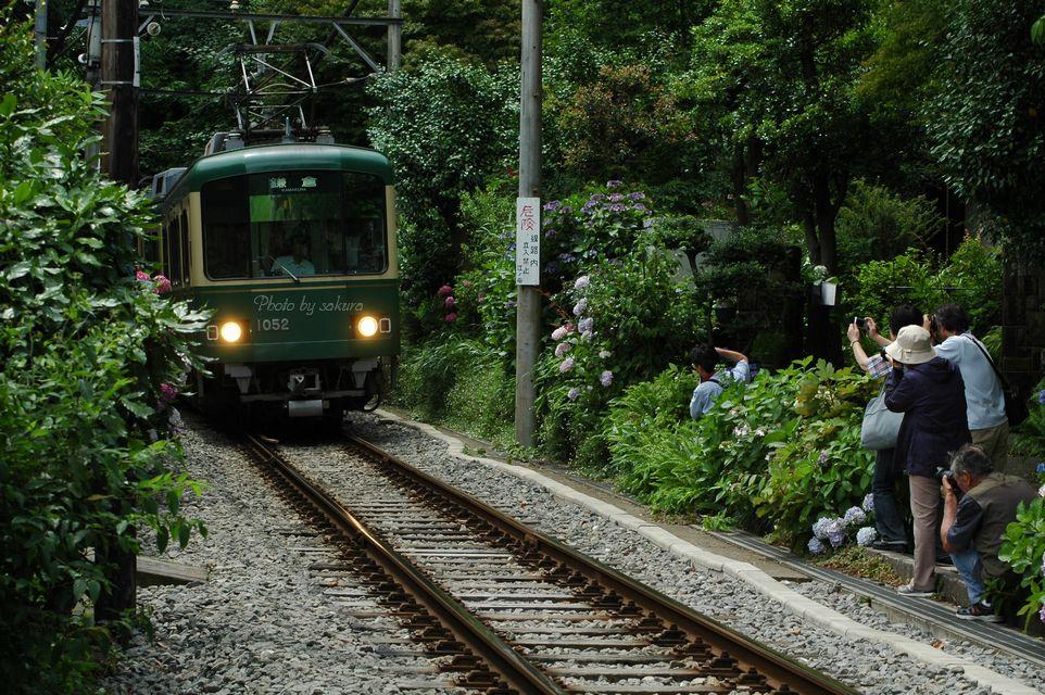 晴の鎌倉へ_b0149624_20113865.jpg