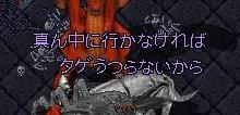 f0165558_1133558.jpg