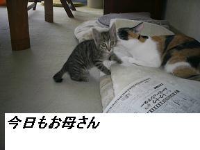 b0112380_1955889.jpg