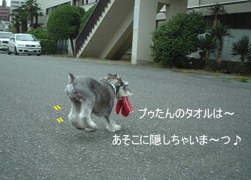 d0079701_20101638.jpg