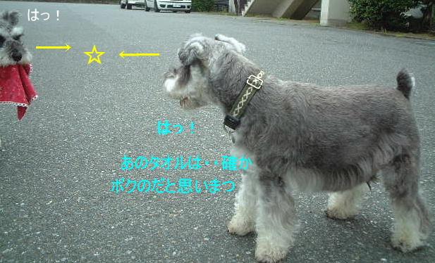 d0079701_2094542.jpg