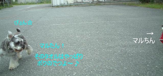 d0079701_2095916.jpg