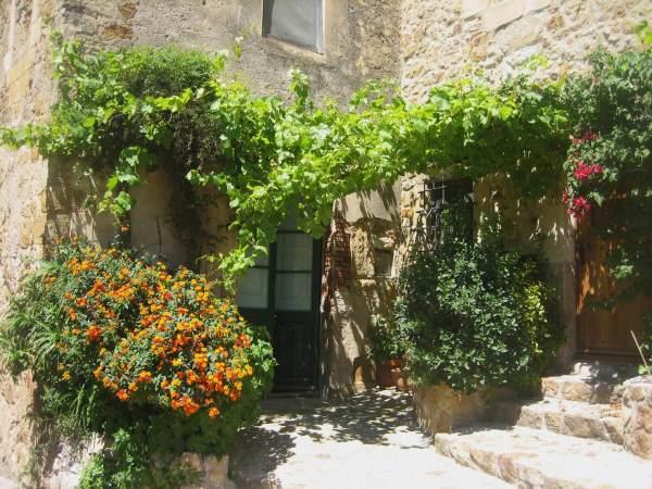 Palsの村で 2_b0064411_0372132.jpg