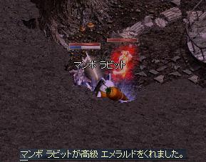 f0101117_2033465.jpg