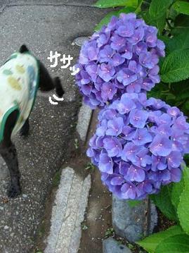 f0141130_13492648.jpg