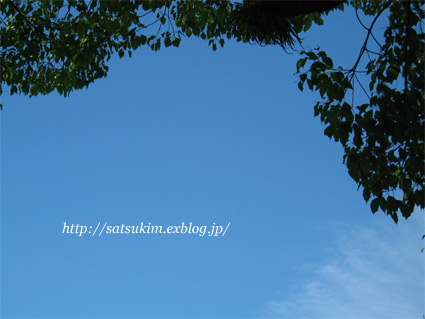 f0178033_1942440.jpg
