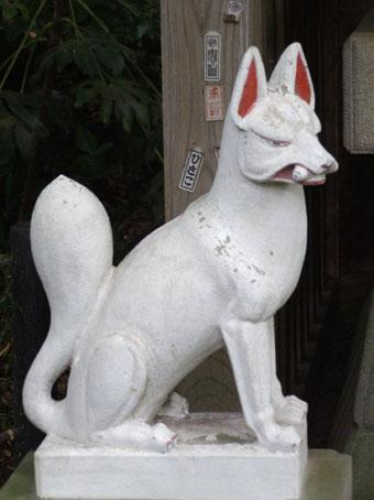 凛々しく、白い狐。ここのお稲荷さんの狐は、表情がいい。ちょっと、どこかふ... うれしいの素