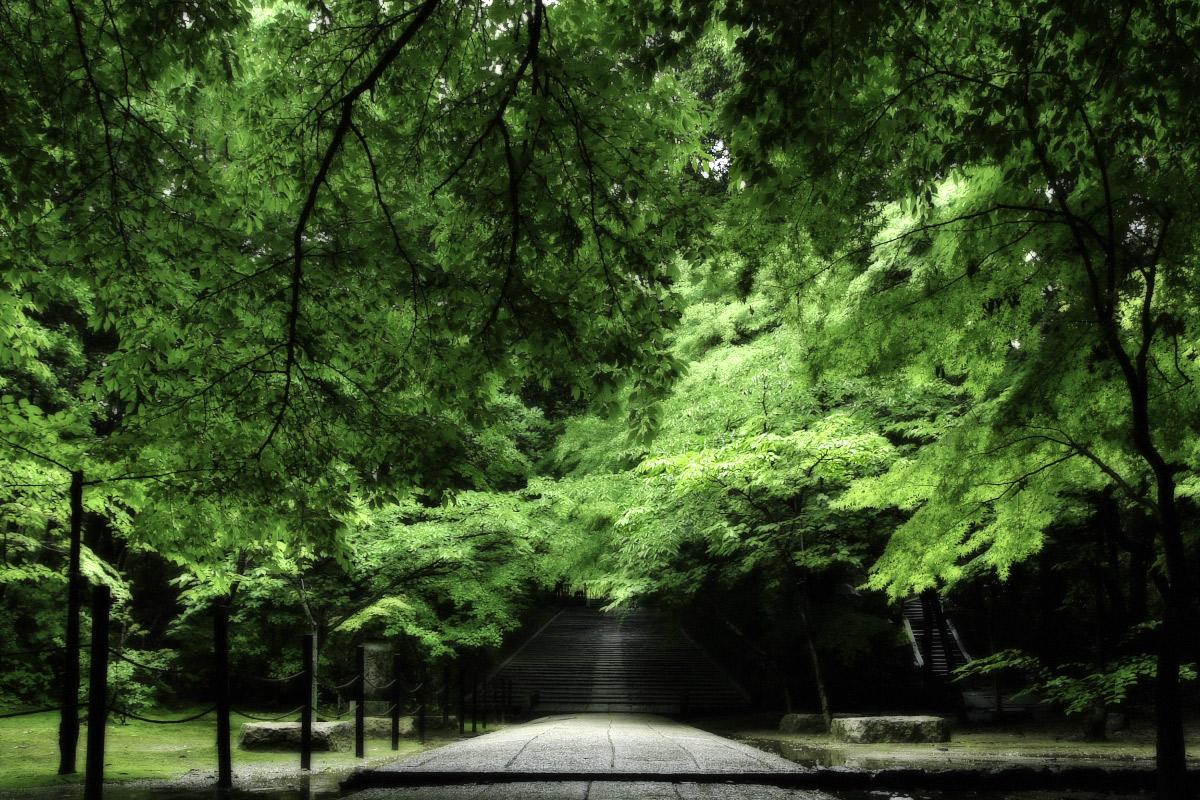 京都 西山三山 <光明寺> 1_f0021869_10403765.jpg