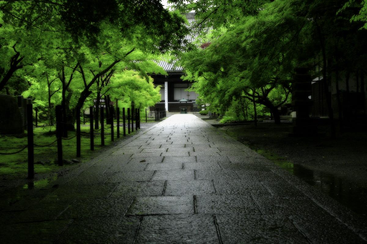 京都 西山三山 <光明寺> 1_f0021869_10424047.jpg