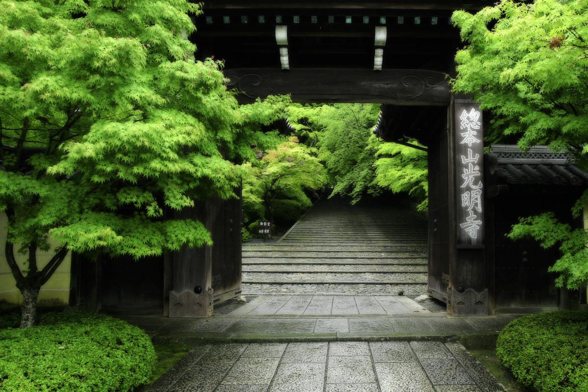 京都 西山三山 <光明寺> 1_f0021869_10504340.jpg