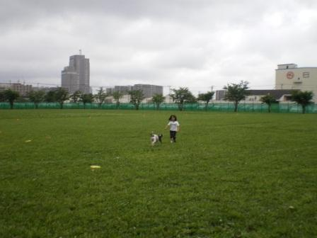 f0140069_20112066.jpg