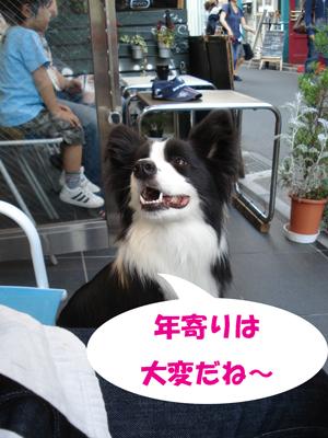 f0132070_036148.jpg