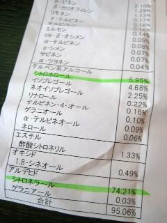 レモンユーカリ_a0091095_18274249.jpg