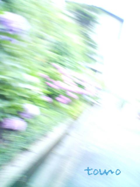 d0133205_045681.jpg