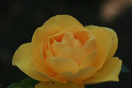 f0041606_19131689.jpg
