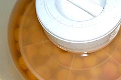 2008年の減塩梅干しのレシピ&経過_d0020309_15161377.jpg