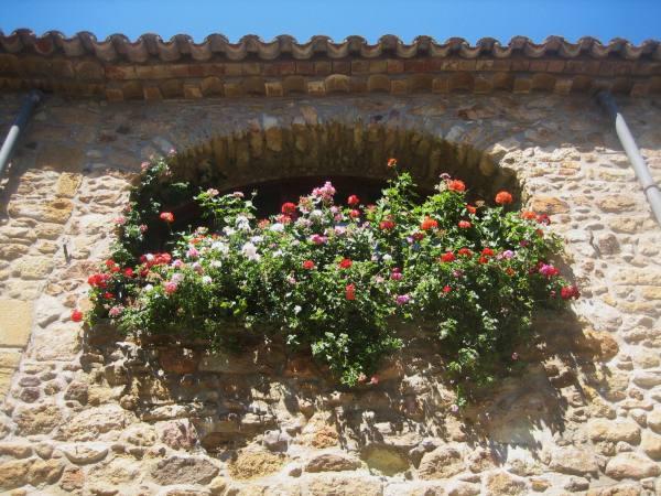Palsの村で 4  窓いろいろ_b0064411_1941146.jpg