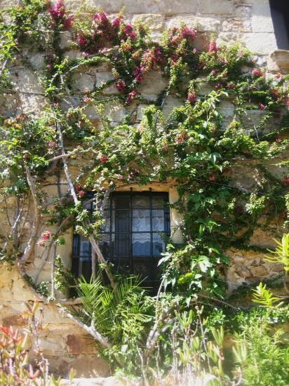 Palsの村で 4  窓いろいろ_b0064411_1957290.jpg