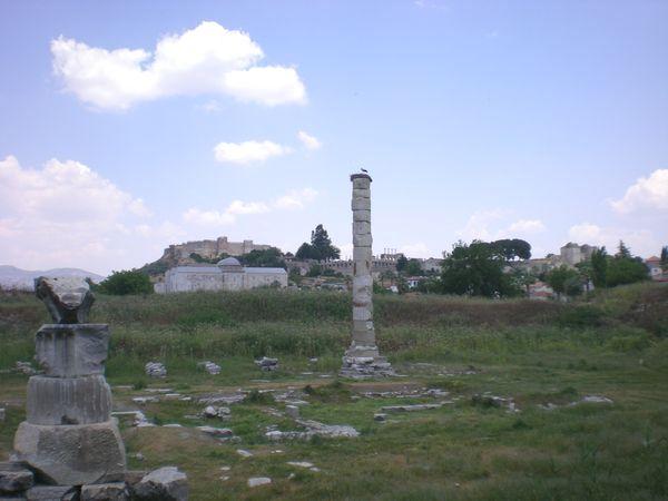 6月26日(木)トルコ旅行③エフェソス~パムッカレ_f0060461_20235612.jpg