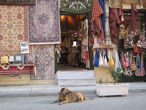絨毯やさんの店先にいたカネロ_f0037264_5545272.jpg