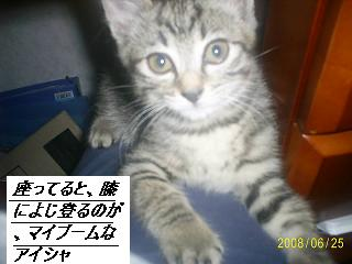 b0112380_1052910.jpg