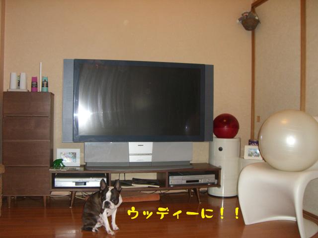 c0122897_0245043.jpg