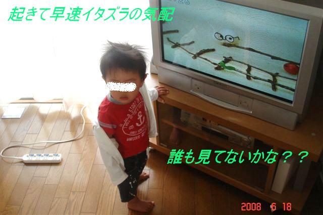 b0102728_21645100.jpg