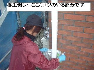 塗装工事・最終日_f0031037_1992337.jpg