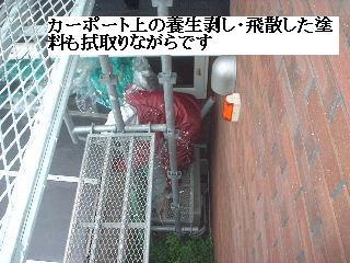 塗装工事・最終日_f0031037_1993468.jpg