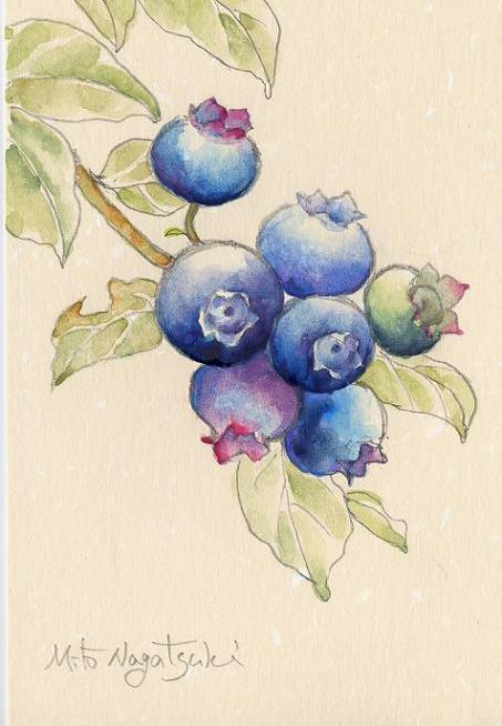 『ブルーベリーⅡ』~水彩画~近所に農協があります。農協の駐車場では、早朝... ブルーベリーの絵