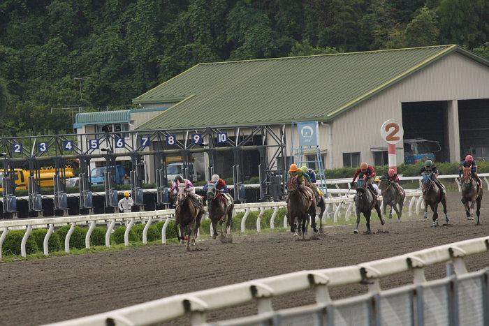 2008年6月22日(日) 高知競馬 11R 一発逆転 ファイナルレース_a0077663_19113385.jpg