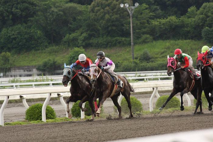 2008年6月22日(日) 高知競馬 11R 一発逆転 ファイナルレース_a0077663_1911418.jpg