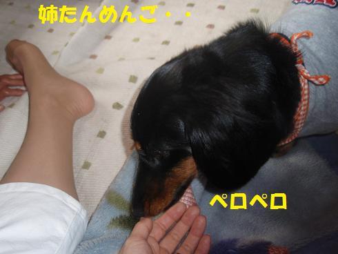 c0151866_22234383.jpg