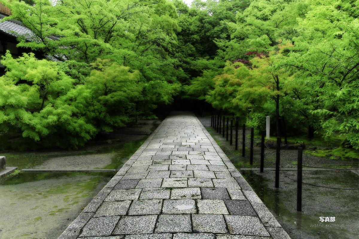 京都 西山三山 <光明寺> 2_f0021869_16254876.jpg