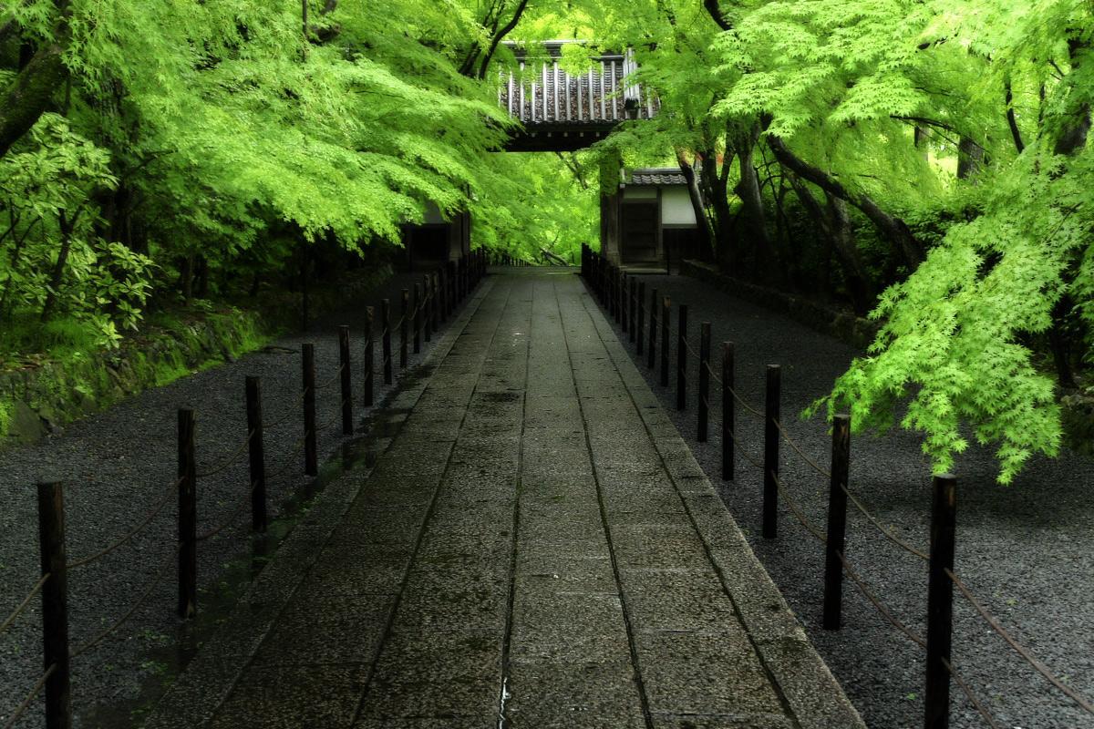 京都 西山三山 <光明寺> 2_f0021869_1636627.jpg