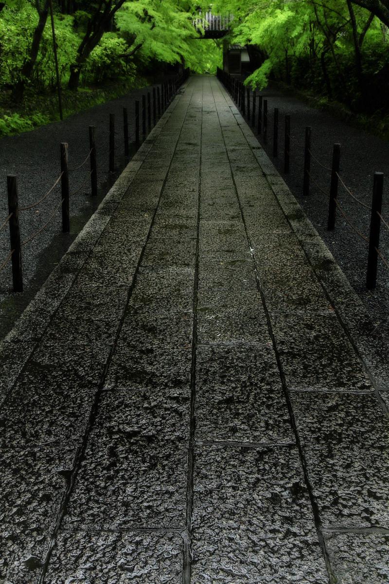 京都 西山三山 <光明寺> 2_f0021869_1638348.jpg