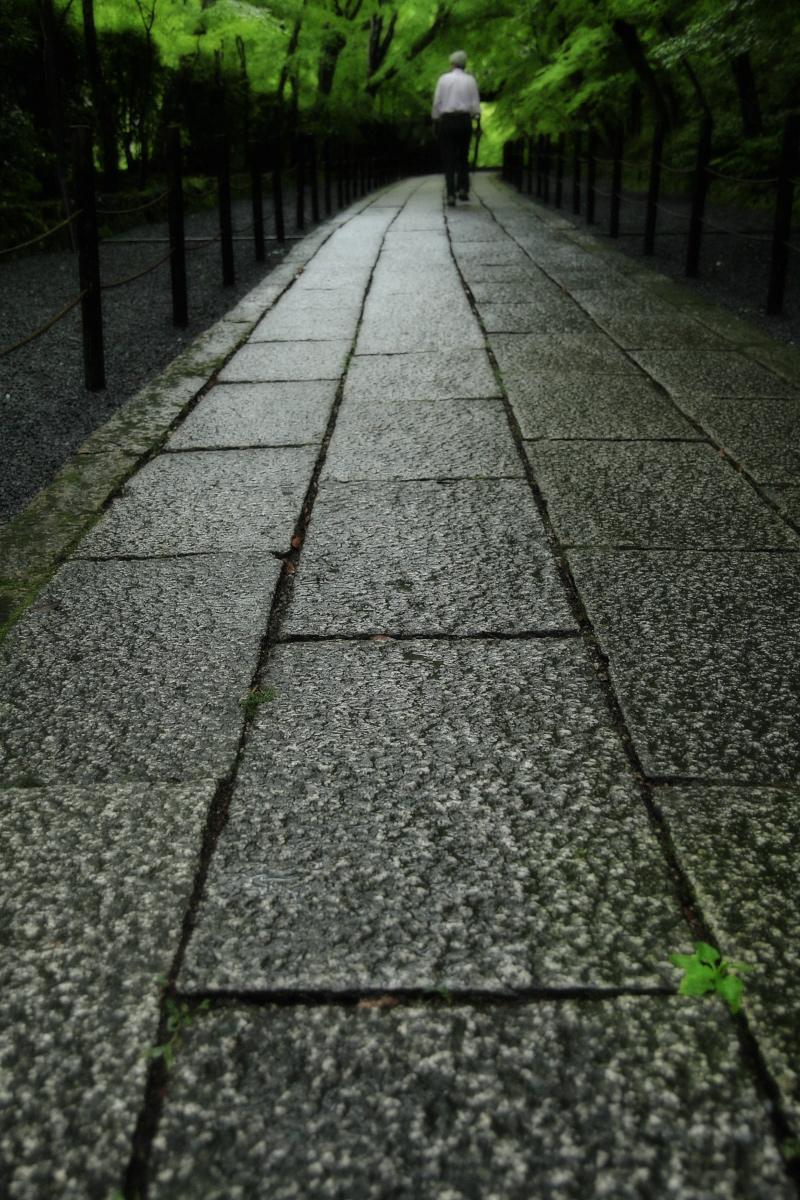 京都 西山三山 <光明寺> 2_f0021869_1646249.jpg
