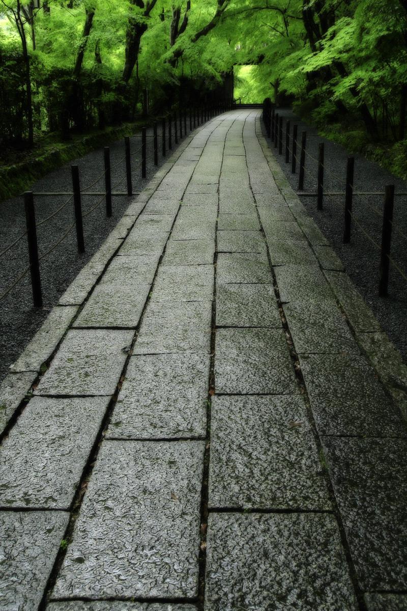 京都 西山三山 <光明寺> 2_f0021869_16462861.jpg