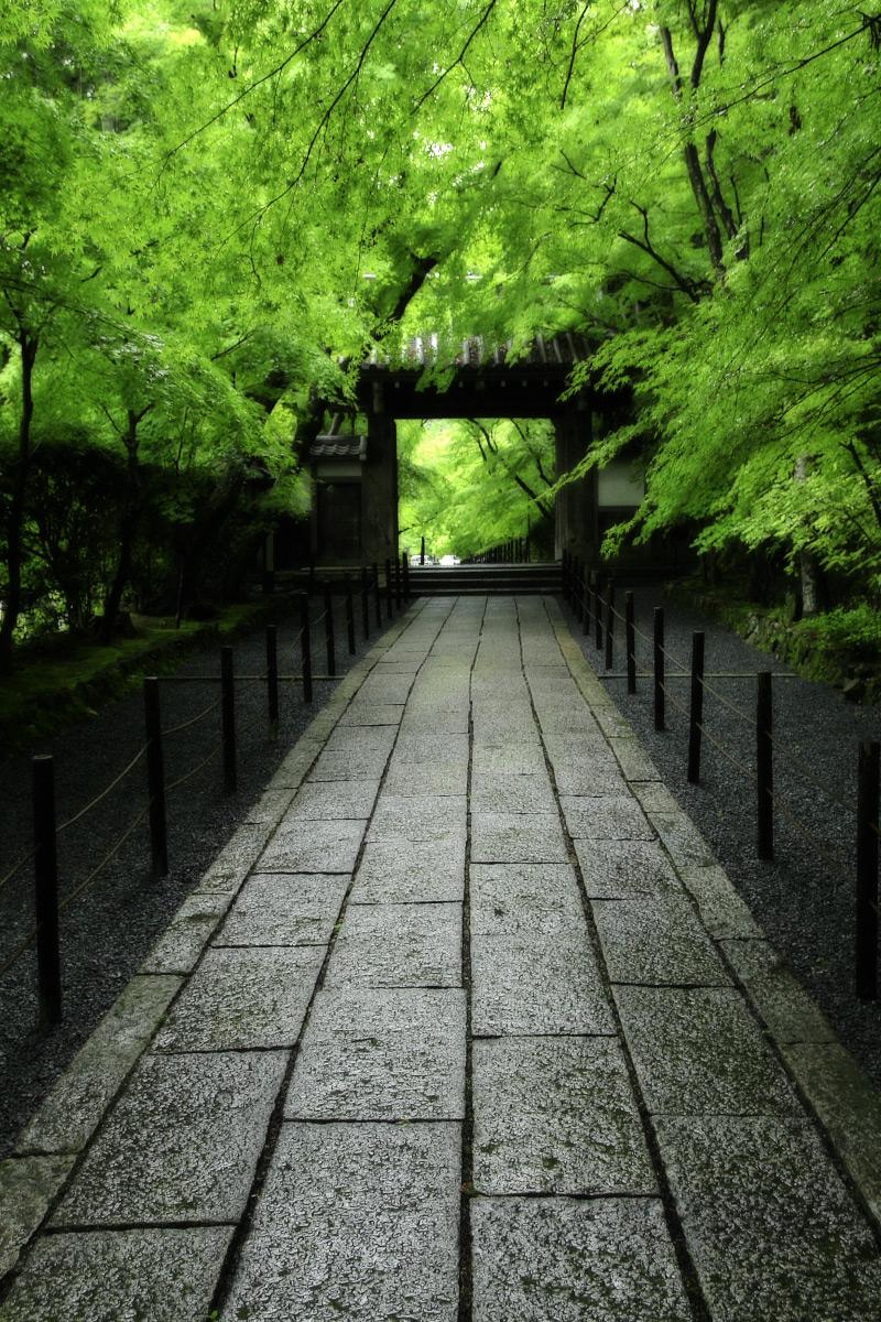 京都 西山三山 <光明寺> 2_f0021869_164741.jpg
