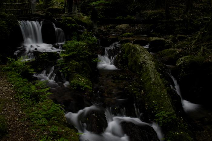 先ほどは滝のすぐ近くでしたが、こちらは少し離れた反対側の角度から撮ってみました。風が強くなりこの後すぐに大雨が。。。三脚片付けカメラ閉まって大急ぎで駐車場までダッシュしました(笑)