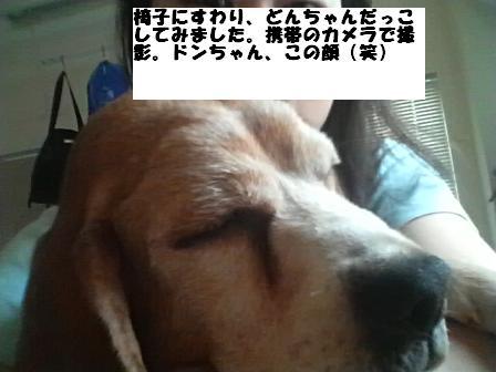 b0114379_13155492.jpg