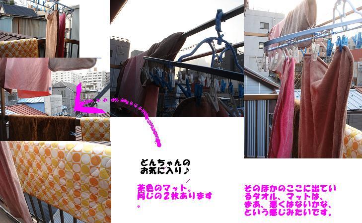 b0114379_2011527.jpg
